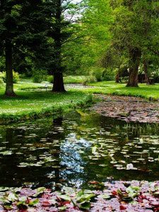 ireland-lake-garden-curved-sm