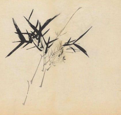 Tang-kuei and Magnolia Formula (wu ji san)